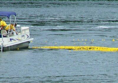 boat gathering ducks